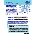 Click here for more information about Stage IV Non-Small Cell Lung Cancer-PDF Download