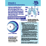 Click here for more information about Stage II Non-Small Cell Lung Cancer-PDF Download